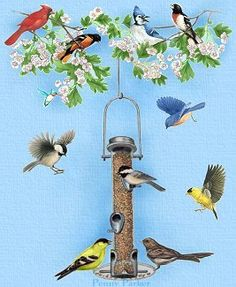 Birds By Artist Penny Parker
