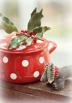 Red and White Polka Dot for my kitchen.