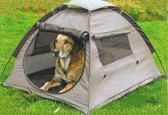 Your best friends tent