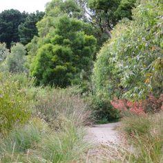 Chewton Garden Inspiration | Eckersley Garden Architecture