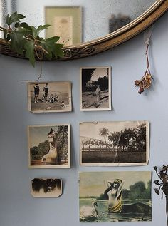 vintage photographs on the wall