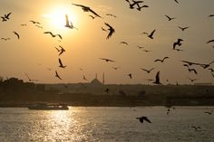 Sunset at Golden Horn in Istanbul