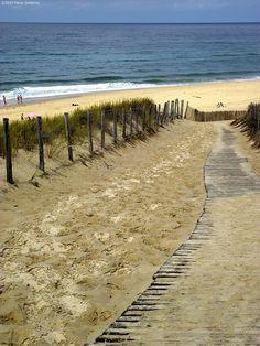 **Lacanau beach. Aquitaine, France.