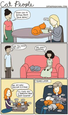 Cat people have a very particular behavior…