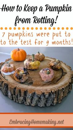 How to Keep a Pumpkin from Rotting - I need this for fall!!