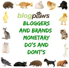 Bloggers and Brands: Monetary Do's and Dont's - BlogPaws
