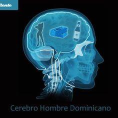 Cerebro Hombre Dominicano