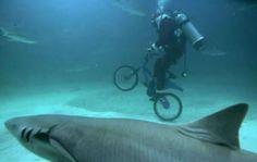 #underwaterbiking #shark #scuba