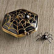 Spider On Spiderweb Limoges