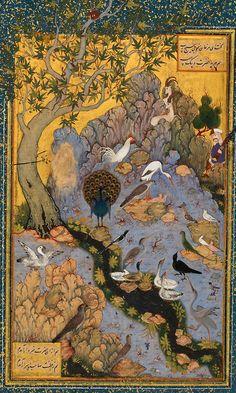mantıku't-tayr bird, persian miniatures