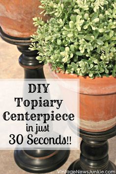 DIY Topiary Centerpiece in Just 30 Seconds // I like this look