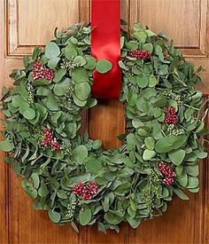 Eucalyptus Wreath with Red Berries; I could make this with eucalyptus from Trader Joe's!