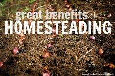 Great Benefits of Homesteading | The Elliott Homestead