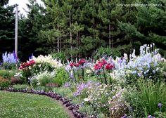 """Allen Becker """"Garden Guru"""" blog~"""