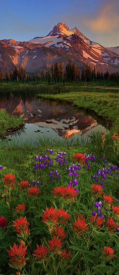 Mt. Jefferson in the Jefferson Park Wilderness of central Oregon, United States. • photo: Kevin McNeal.