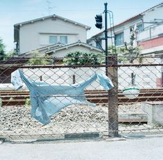 summer breeze ++ photo : hideaki hamada