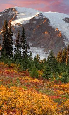 Autumn - Mount Rainier National Park, Washington USA
