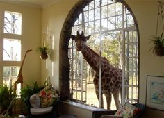 Giraffe Manor is a hotel, world renowned for its resident herd of Rothschild giraffes, which routinely poke their heads into open windows