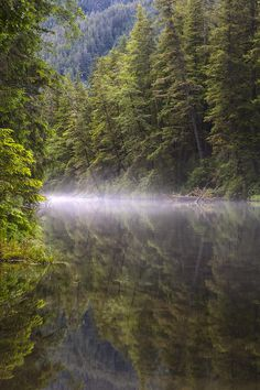 'Morning Mist' photo by Tim Grams; Redoubt River, Tongass National Forest, Alaska
