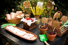 "Eco-Friendly ""Plant a Seed"" Birthday"