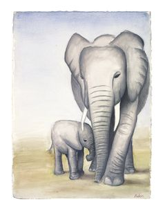 Dream of Elephants -