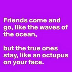 funni stuff, bff, thought, friends come and go, quot, octopuses
