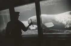 """Garry Winogrand (American, 1928–1984). New York Aquarium, Coney Island, New York, 1967. Gelatin silver print. The Garry Winogrand Archive, Center for Creative Photography, The University of Arizona. © The Estate of Garry Winogrand, courtesy Fraenkel Gallery, San Francisco. All rights reserved.   This photograph is featured in """"Garry Winogrand,"""" on view through September 21, 2014."""