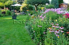 Love the purple, front garden idea