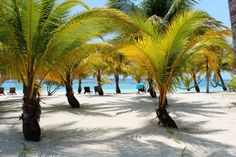 South Water Caye - Pelican Beach Resort Scene - #Belize #Belize Resorts #Belize Vacations