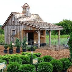Amazing chicken coops!