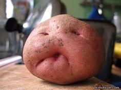 Mr Potato head!