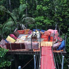 Canopy hideout spot / South Wales Australia.