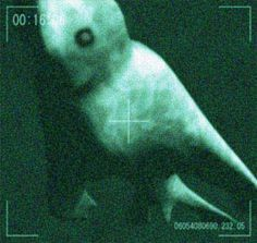 """Over the past few years, rumors have circulated in Japan about the existence of gigantic humanoid life-forms inhabiting the icy waters of the Antarctic. Reportedly observed on multiple occasions by crew members of government-operated """"whale research"""" ships, these so-called """"Ningen"""" (lit. """"humans"""") are said to be completely white in color with an estimated length of 20 to 30 meters. Eyewitnesses describe them as having a human-like shape, often with legs, arms, and even five-fingered hands."""