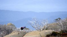 Attractions, High Country, Victoria, Australia-Mount Buffalo