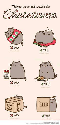 kitty christmas! xx
