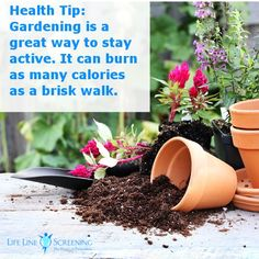 Tips to stay fit on pinterest health exercise and health quotes for How many calories does gardening burn