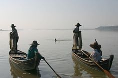Looking for a Good Catch? Ask the Irrawaddy Dolphin - Wildlife Conservation Society