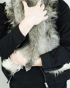Furry by Capree Kimball #Miniature #Schnauzer