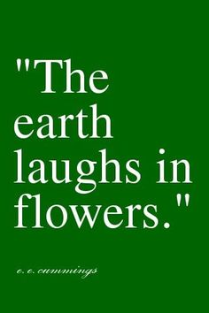 Was laughter a part of your day today? #laugh  #flowers  #ProvenWinners e.e. cumming, flower quotes, green, inspir, flowers, laughter, garden, earth quotes, earth laugh