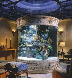 Custom Built Acrylic Aquarium