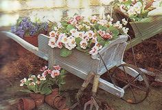 Use old wheelbarrows to display some plants and watering cans in your garden