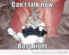 gamer bunny!