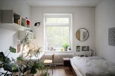 studio, circles, mirrors, beds, interiors, camps, bedrooms, small spaces, apartments