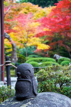 little Forest Buddha