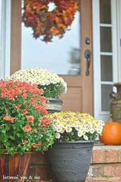 Fall get-aways and front doors.