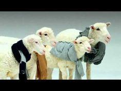 Sheep singing Jingle Bells