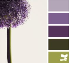 "Initial idea for bedroom tones... might be too ""different"" to really work. #eggplant #purple #huntergreen #green #olivegreen #lavender #bedroom"