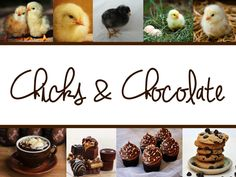 Chicks & Chocolate Party Women love chocolate right?  Why not host a theme party for women and several chocolate desserts. Yum! #ThirtyOneParty