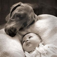 cute little baby girl looking at her dog