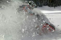 winter passion, winter fun